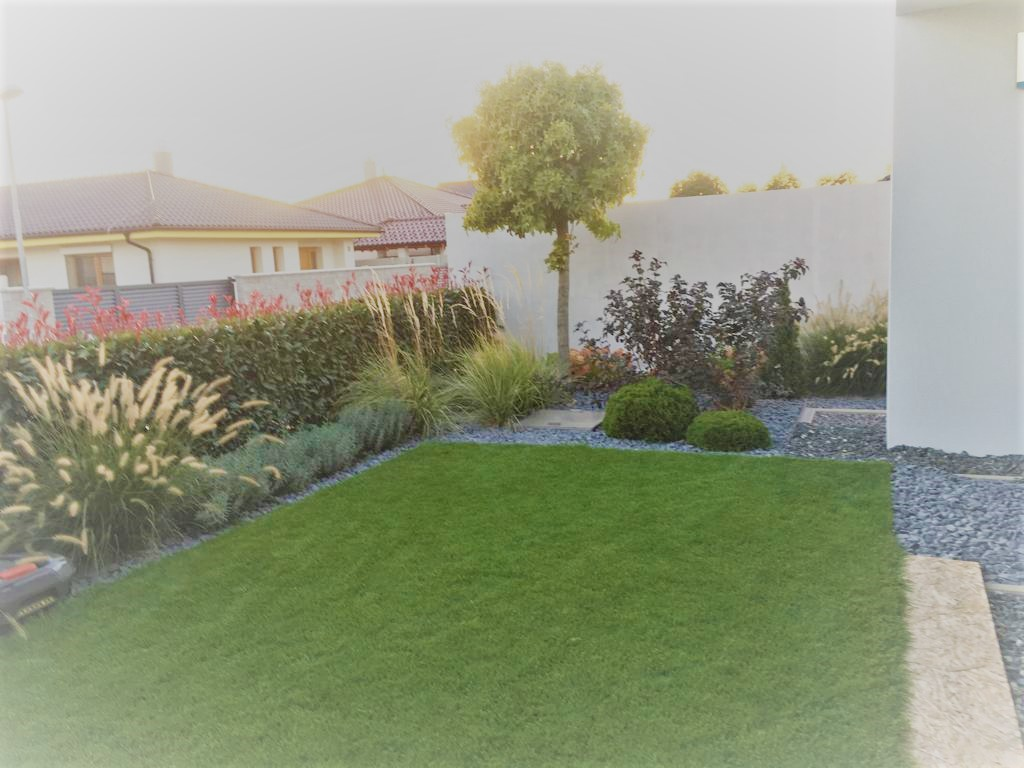 Zahrada 2017 - Obrázok č. 6