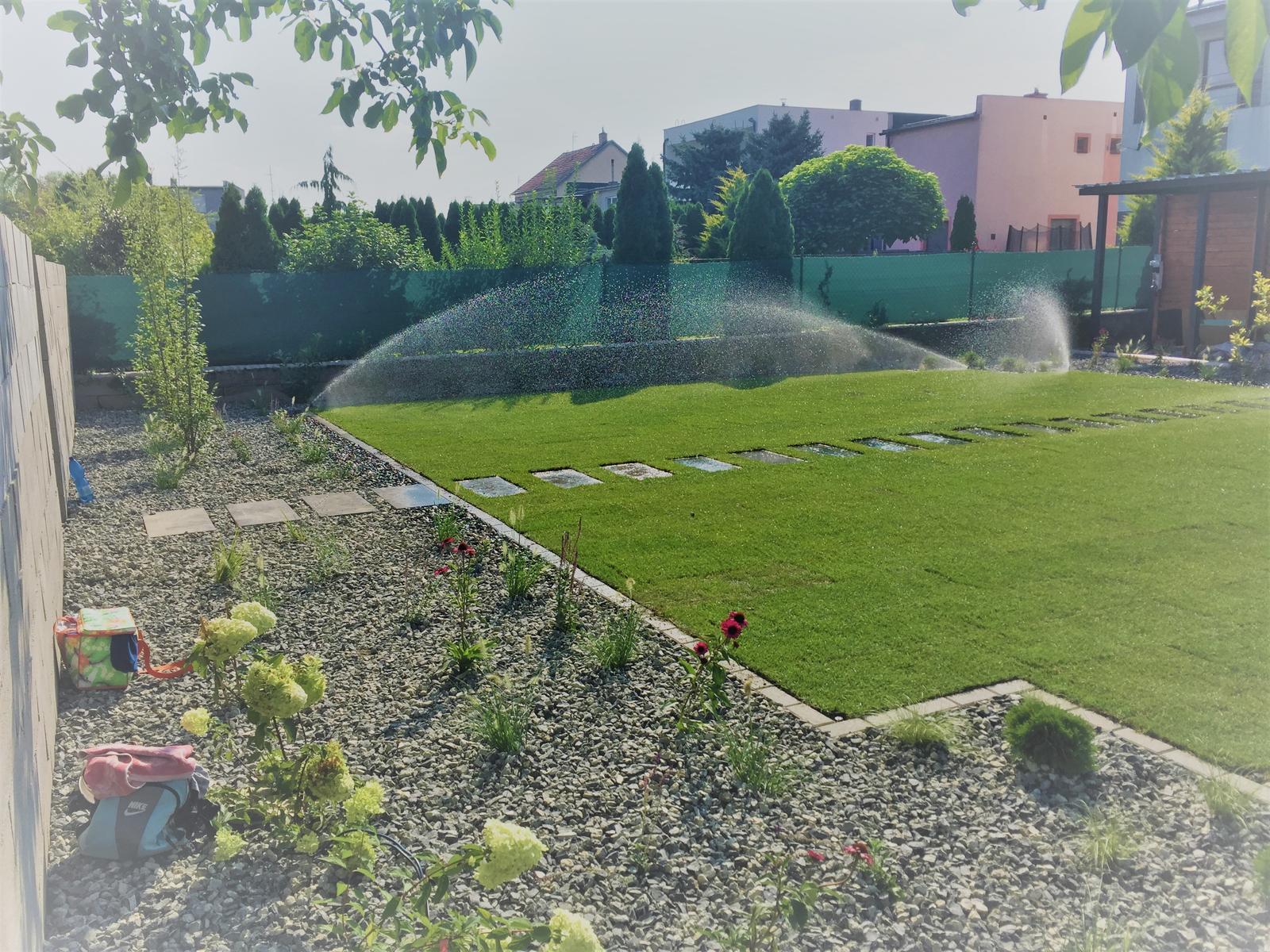 Zahrada 2018 - Obrázok č. 4