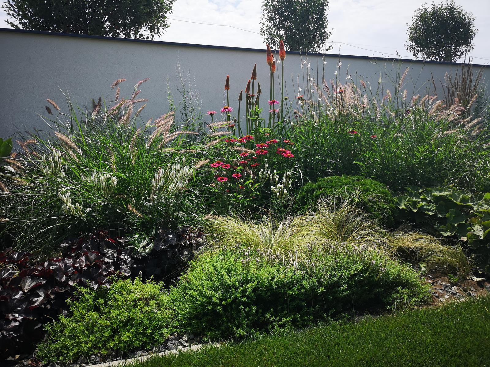 Zahrada 2017 - Obrázok č. 90