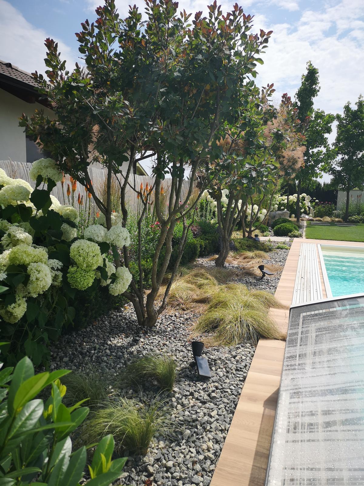 Zahrada 2017 - Obrázok č. 93