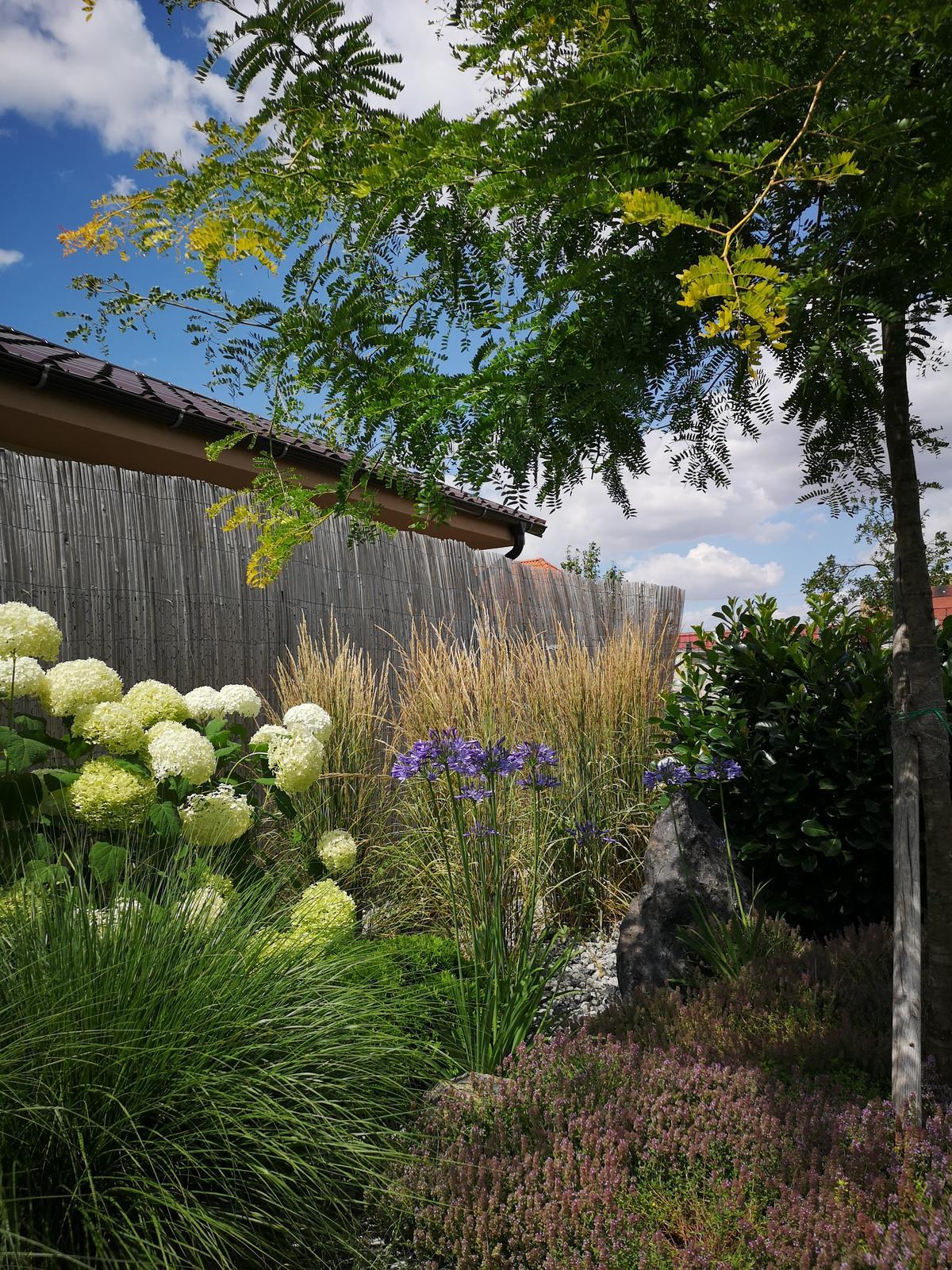 Zahrada 2017 - Obrázok č. 96