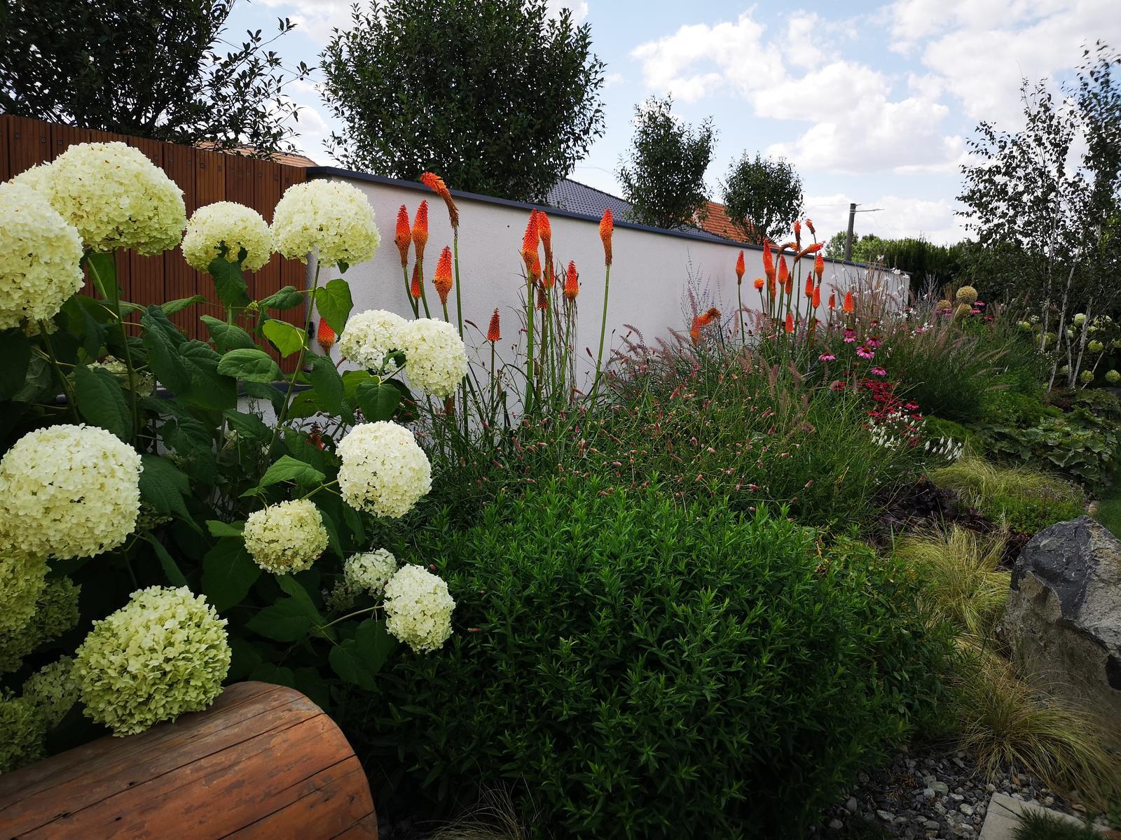 Zahrada 2017 - Obrázok č. 98