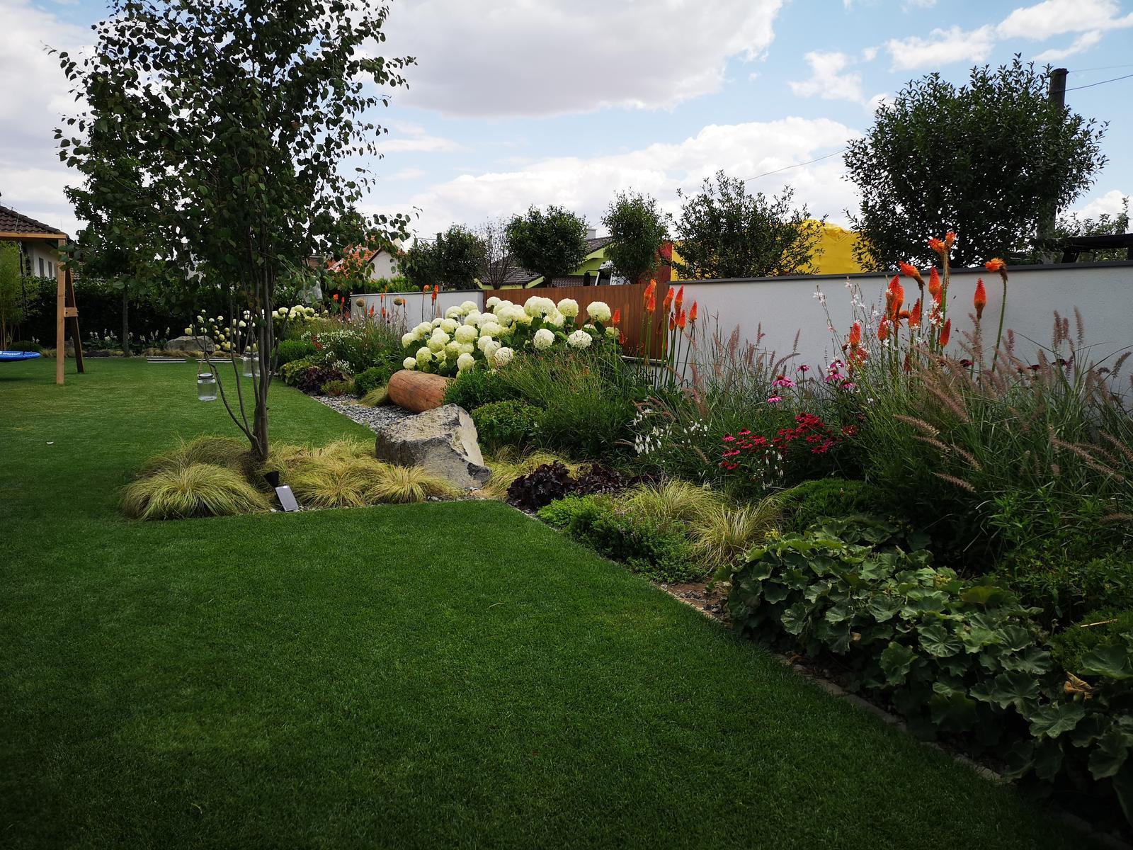 Zahrada 2017 - Obrázok č. 100