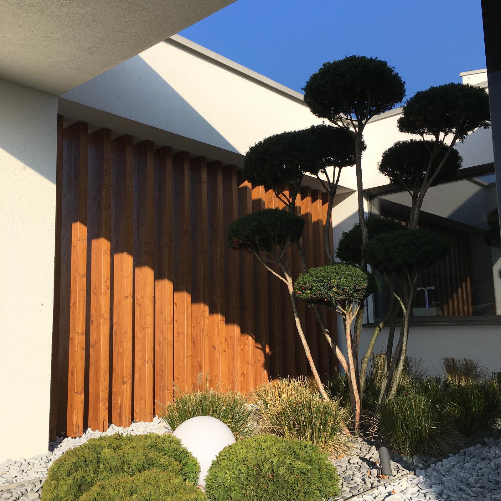 Zahrada 2017 - Obrázok č. 11