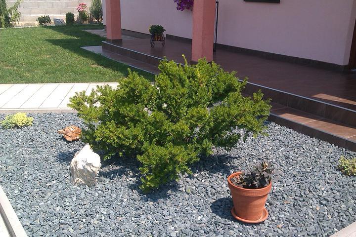 Moje stromčeky, terasa :) - Obrázok č. 12