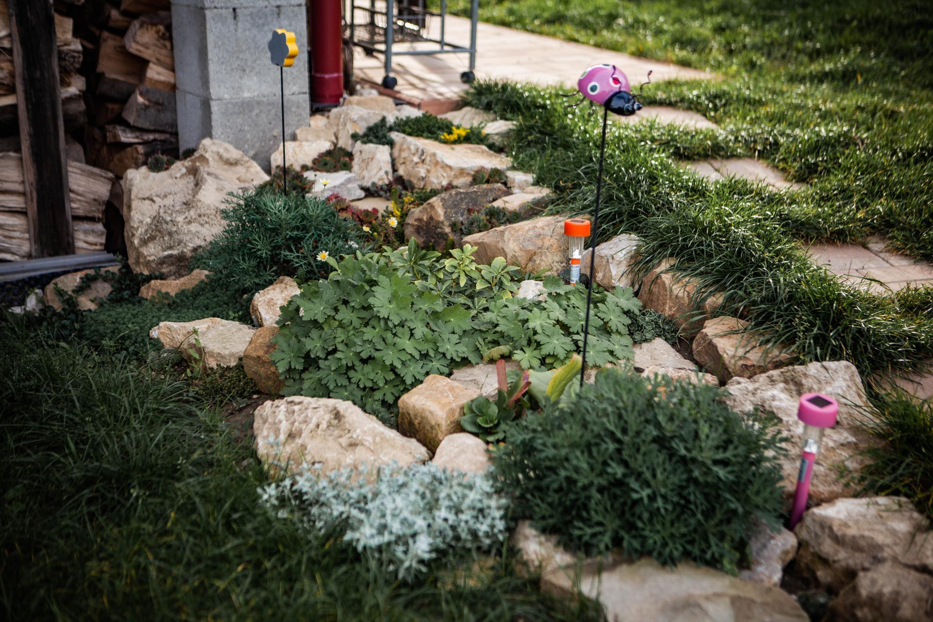U nas v zahrade v roku 2020 - Obrázok č. 30