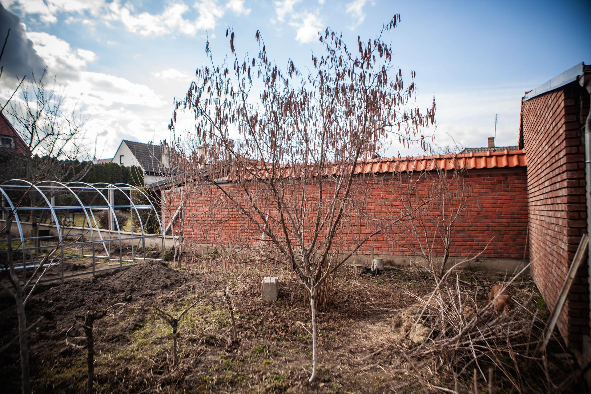 U nas v zahrade v roku 2021 - divoky kut. v lete to tam zije jastericami, jezkami a pod.