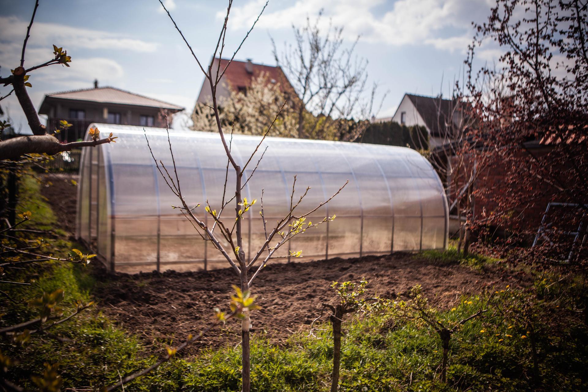 U nas v zahrade v roku 2021 - Obrázok č. 51