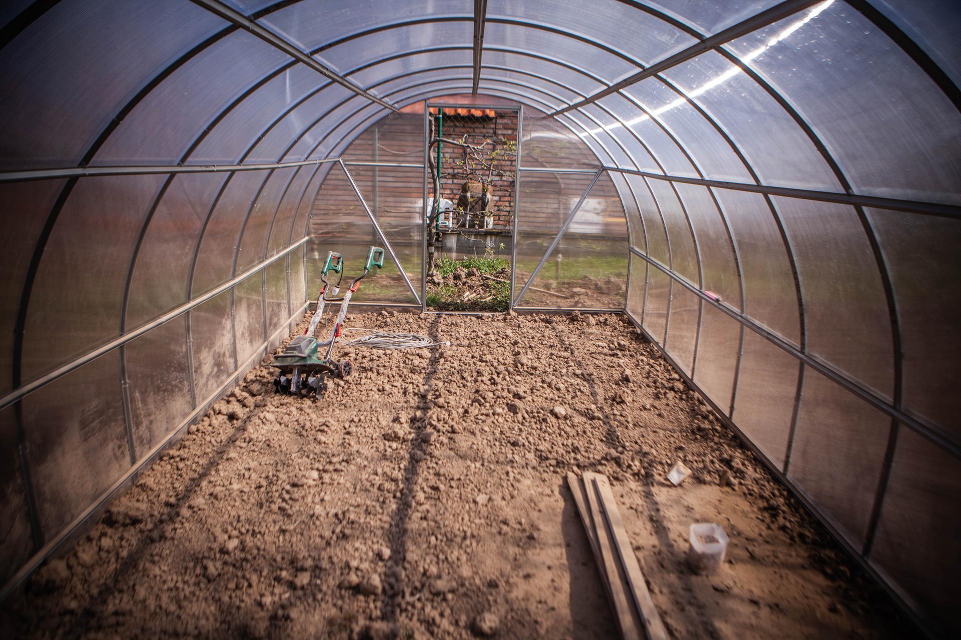 U nas v zahrade v roku 2021 - Obrázok č. 49