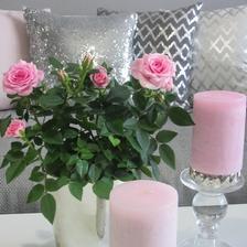 mé oblíbené růže