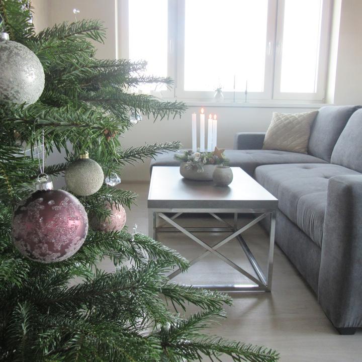 Čas vánoční - Obrázek č. 30