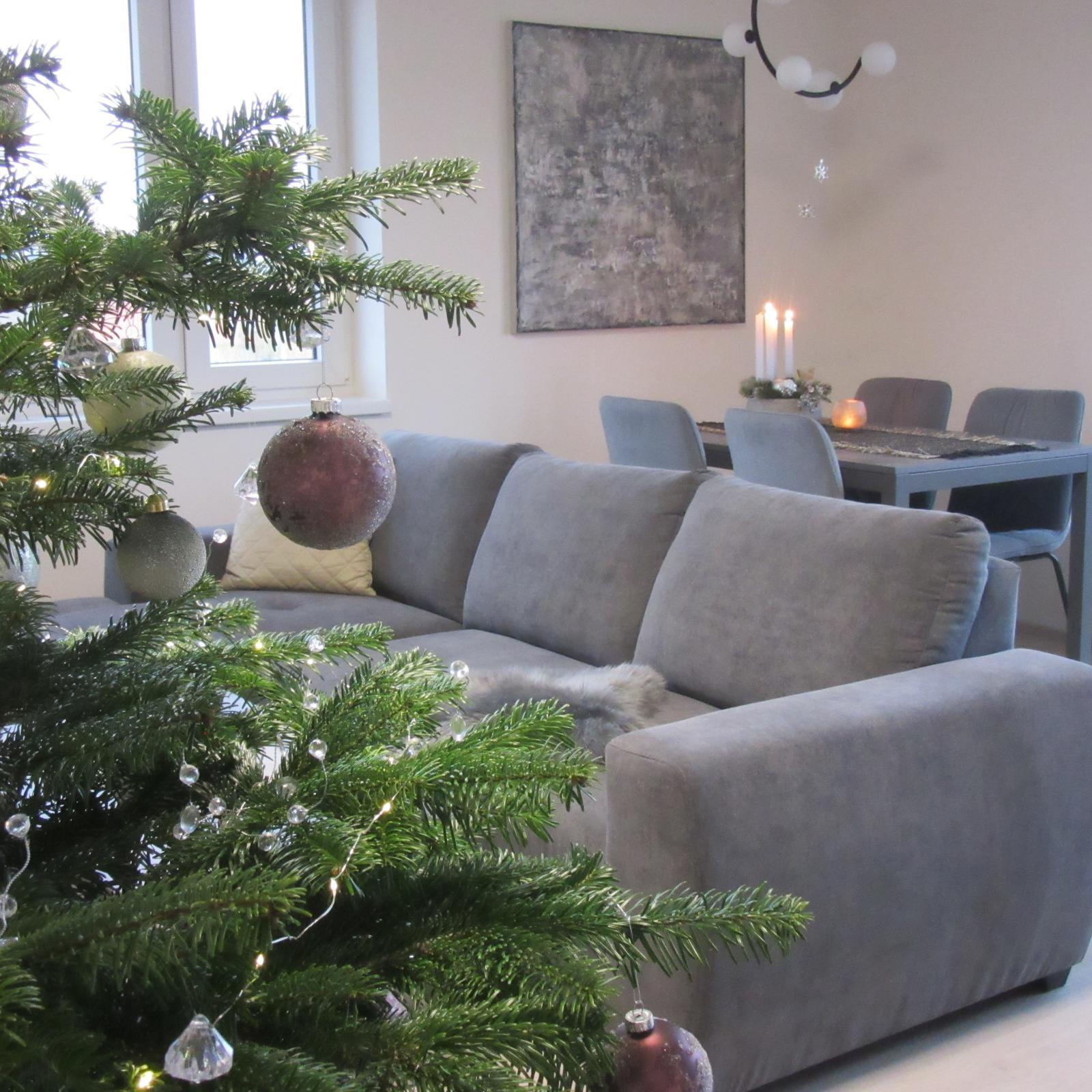 Čas vánoční - Obrázek č. 42