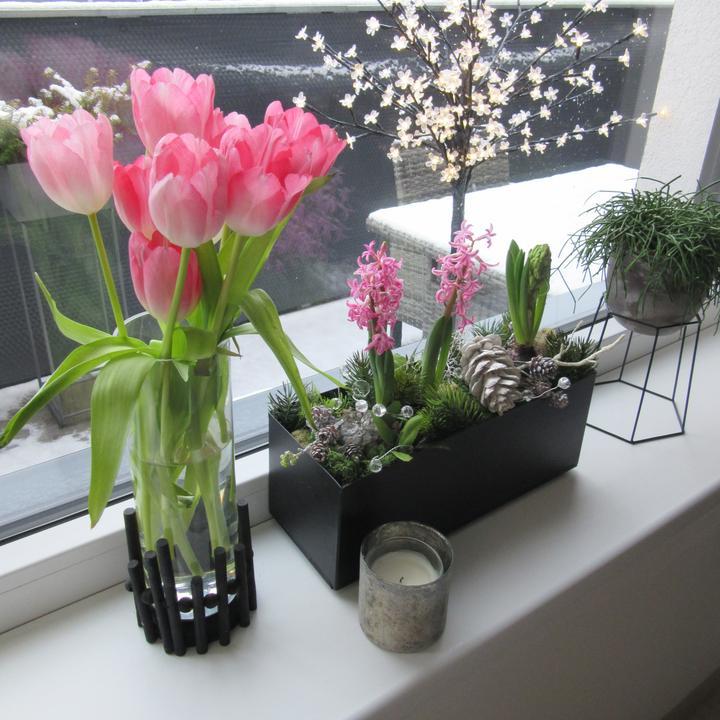 Nové Doma- první rok 2020 - Za okny, sníh, vítr, déšt.... tak aspoň doma trochu jara:)