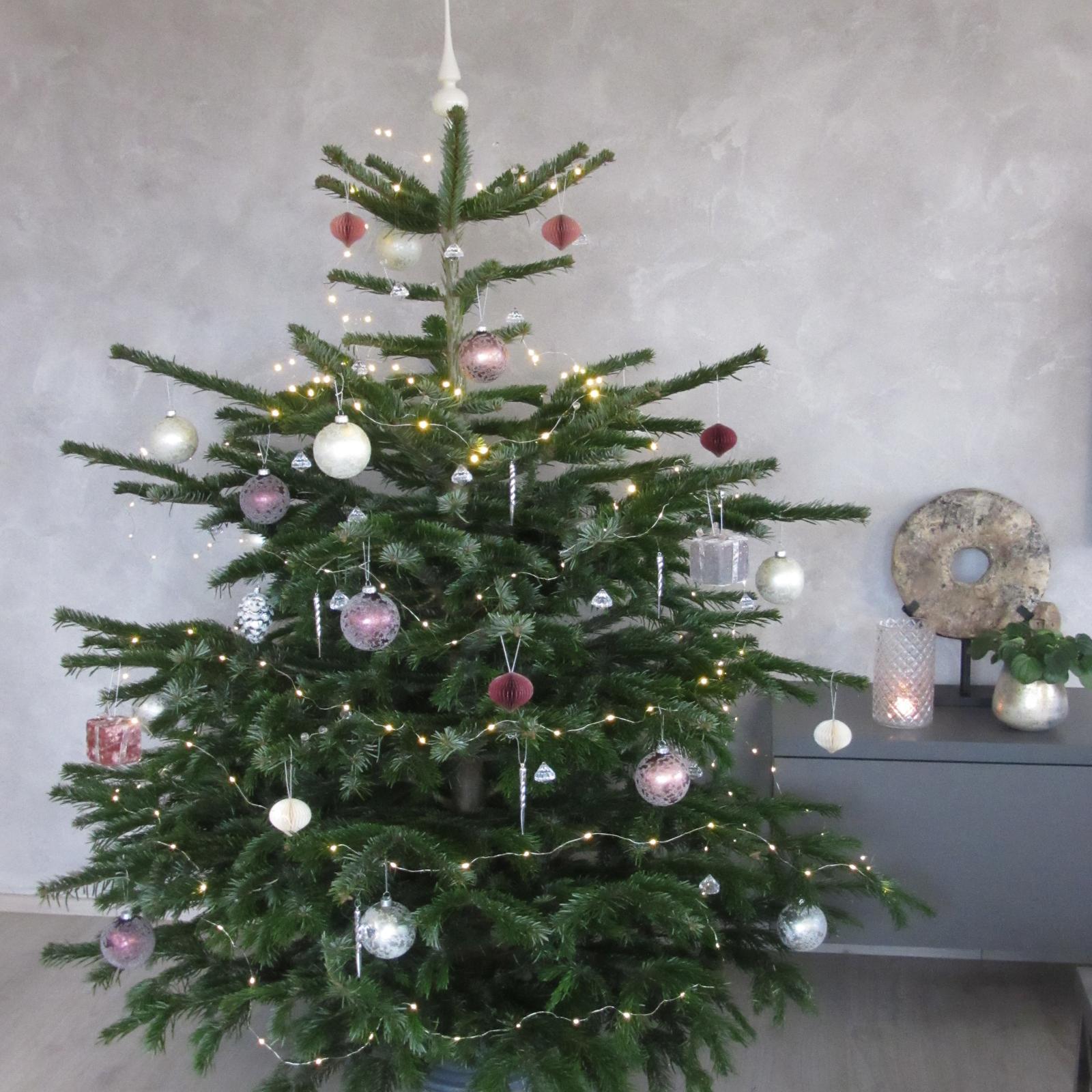 Advent a čas vánoční 2020 - Ten náš.... krásnou 4.adventní neděli všem