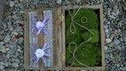 Kompletní dekorace z prirodni svatby. ,