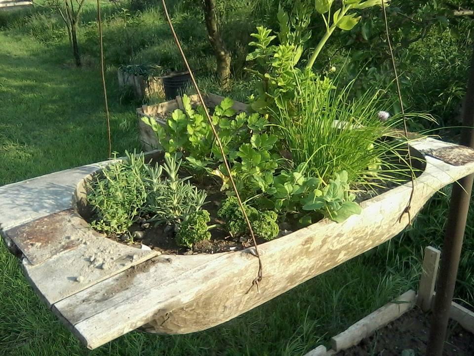 Moj rok v zahrade - Obrázok č. 5