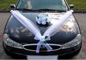 Dekoracny set na svadobne auto,