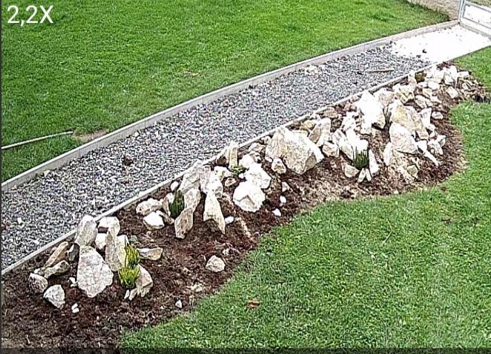 Stavba a destrukce mé skalky - navezeny kameny, začlo sázení