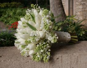 predstav mojej kytice..biele tulipany musia byt!