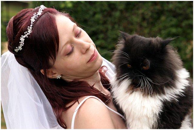 Pre štvornohých svadobčanov i deti - Obrázok č. 2