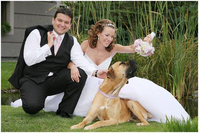 Pre štvornohých svadobčanov i deti - Obrázok č. 15