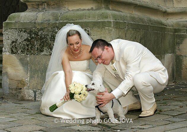 Pre štvornohých svadobčanov i deti - Obrázok č. 18
