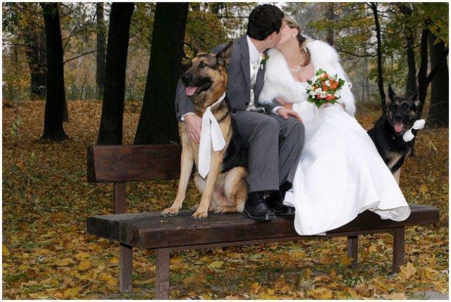 Pre štvornohých svadobčanov i deti - Obrázok č. 23