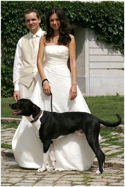 Pre štvornohých svadobčanov i deti - Obrázok č. 24