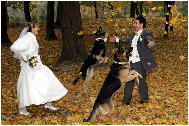 Pre štvornohých svadobčanov i deti - Obrázok č. 28