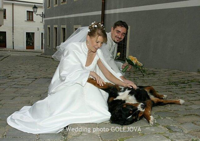 Pre štvornohých svadobčanov i deti - Obrázok č. 33