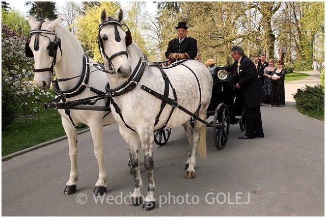 Nie sú kone ako kone... - Obrázok č. 1