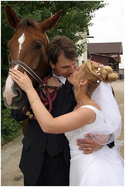 Nie sú kone ako kone... - Obrázok č. 4