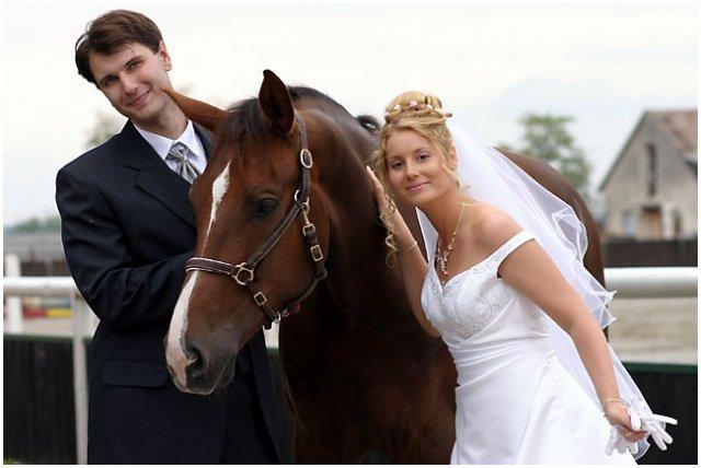 Nie sú kone ako kone... - Obrázok č. 5
