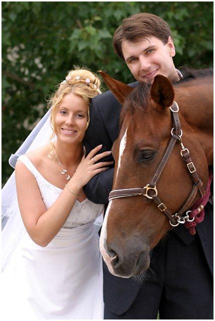 Nie sú kone ako kone... - Obrázok č. 6