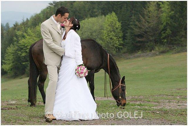 Nie sú kone ako kone... - Obrázok č. 8