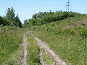 i kolem nás je živo :-) cestička kousek nad pozemkem