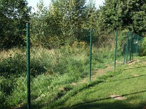 manželova prácička... plot dělal sám s minimální pomocí :-)