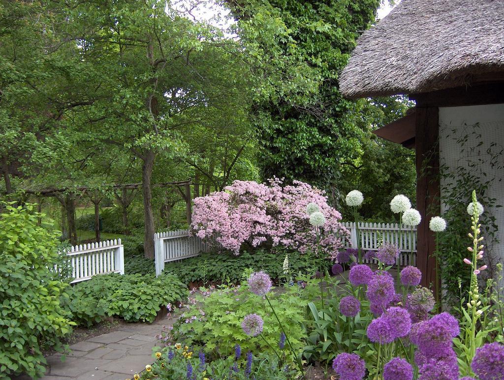 Zahrady - Obrázek č. 50