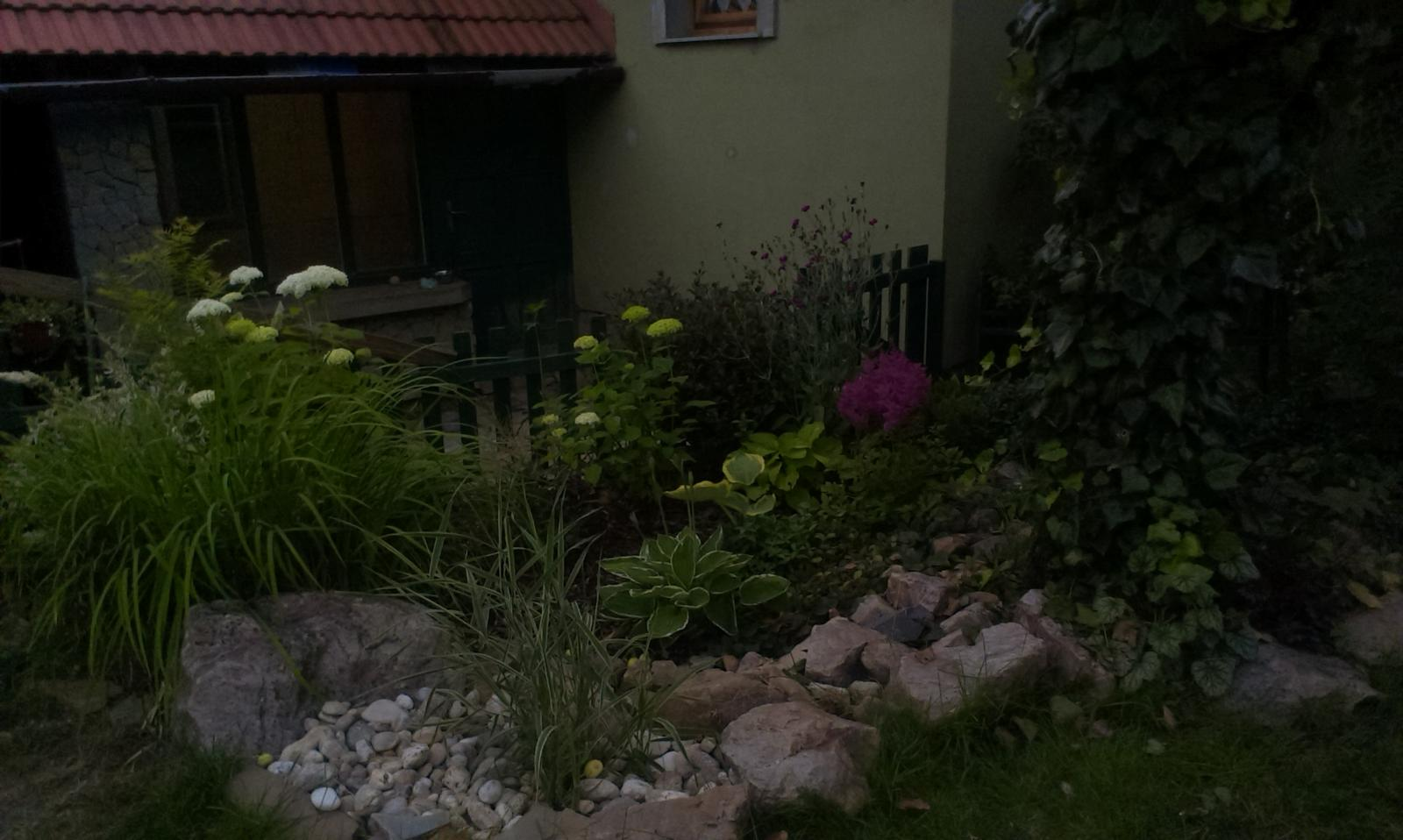 Pre @gemini06 - V tej medzere vzadu pri plote sa rozrastie panašovaný ibišek sýrsky. Hosty sa už rozrastajú, astilbe začínajú kvitnúť.