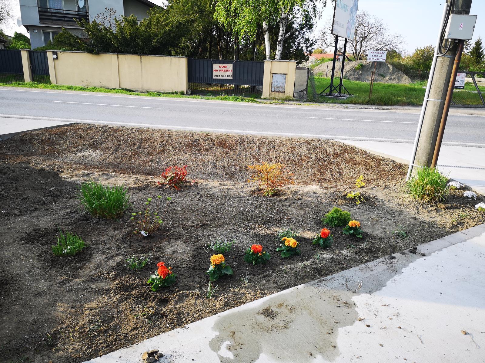 Rekonstrukcia RD - Sice je to uplne inak jak som si to predstavoval, ale travy boli zadarmo, a zvysok nakupila manzelka v duchu toto sa mi pacilo, niekam to zasad. Jarok je k tomu mix datelina (eco lawn) a pas lucnych kvetov, uvidime co a ci vyrastie