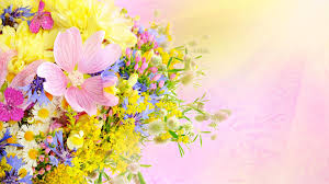♥M+P♥ Přípravy - Floristka také domluvená, chci kytici převážně z lučního kvítí a nevěstin závoj :-)