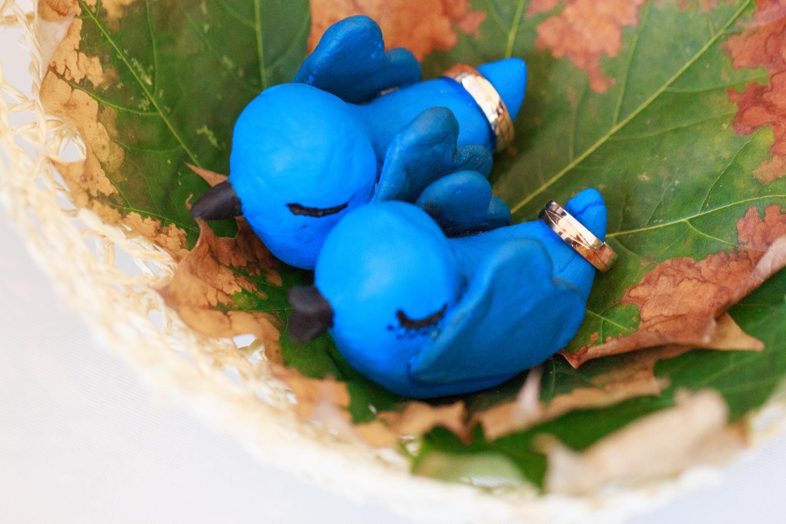 Jana{{_AND_}}Jan - Ptáčci v hnízdě jako symbol našeho společného příjmení