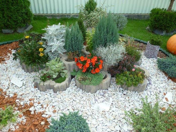 Inšpirácia - záhrada - Obrázok č. 25