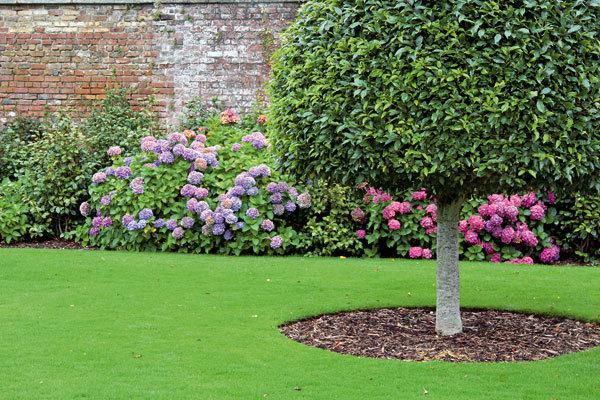 Inšpirácia - záhrada - Obrázok č. 211
