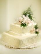 top tvary naseho dortu