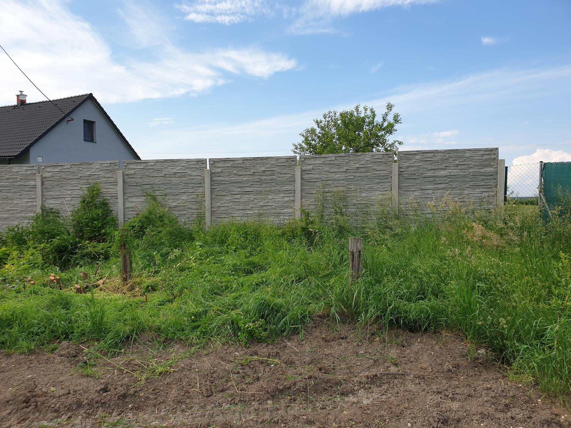 Zahrada a terasa - Obrázek č. 10