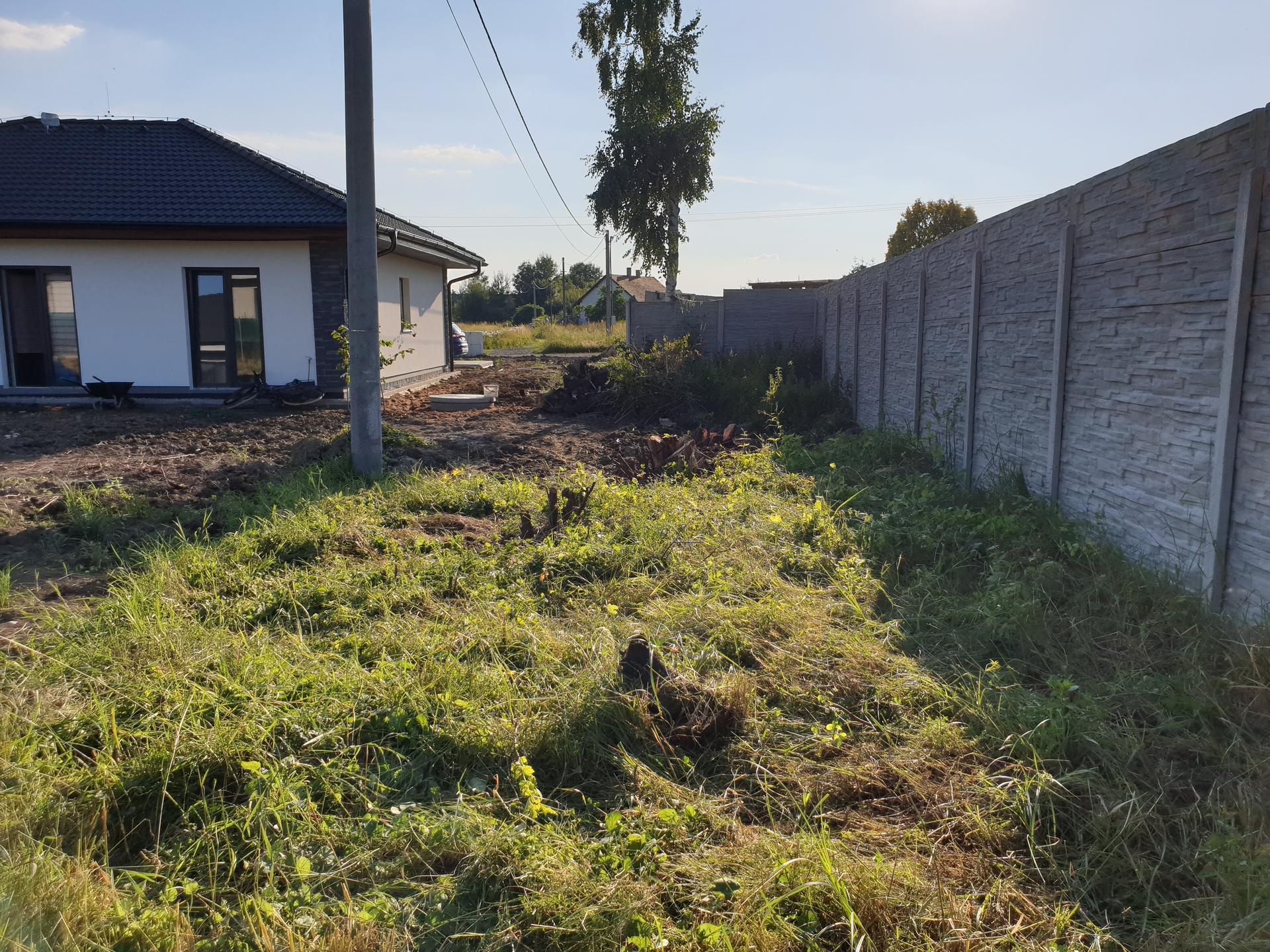 Zahrada a terasa - Obrázek č. 30