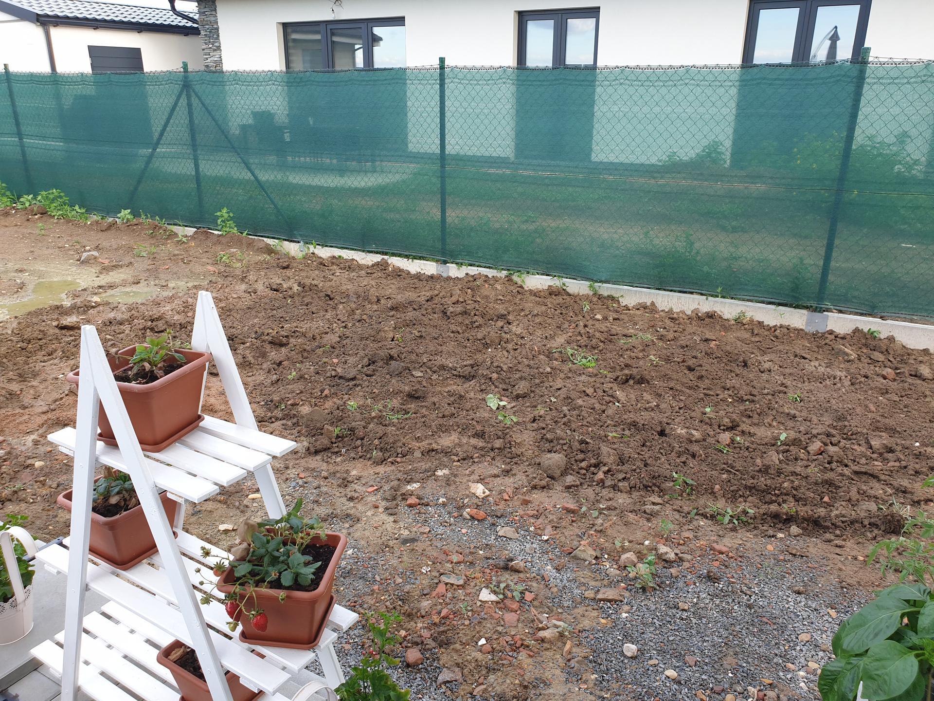 Zahrada a terasa - Obrázek č. 22