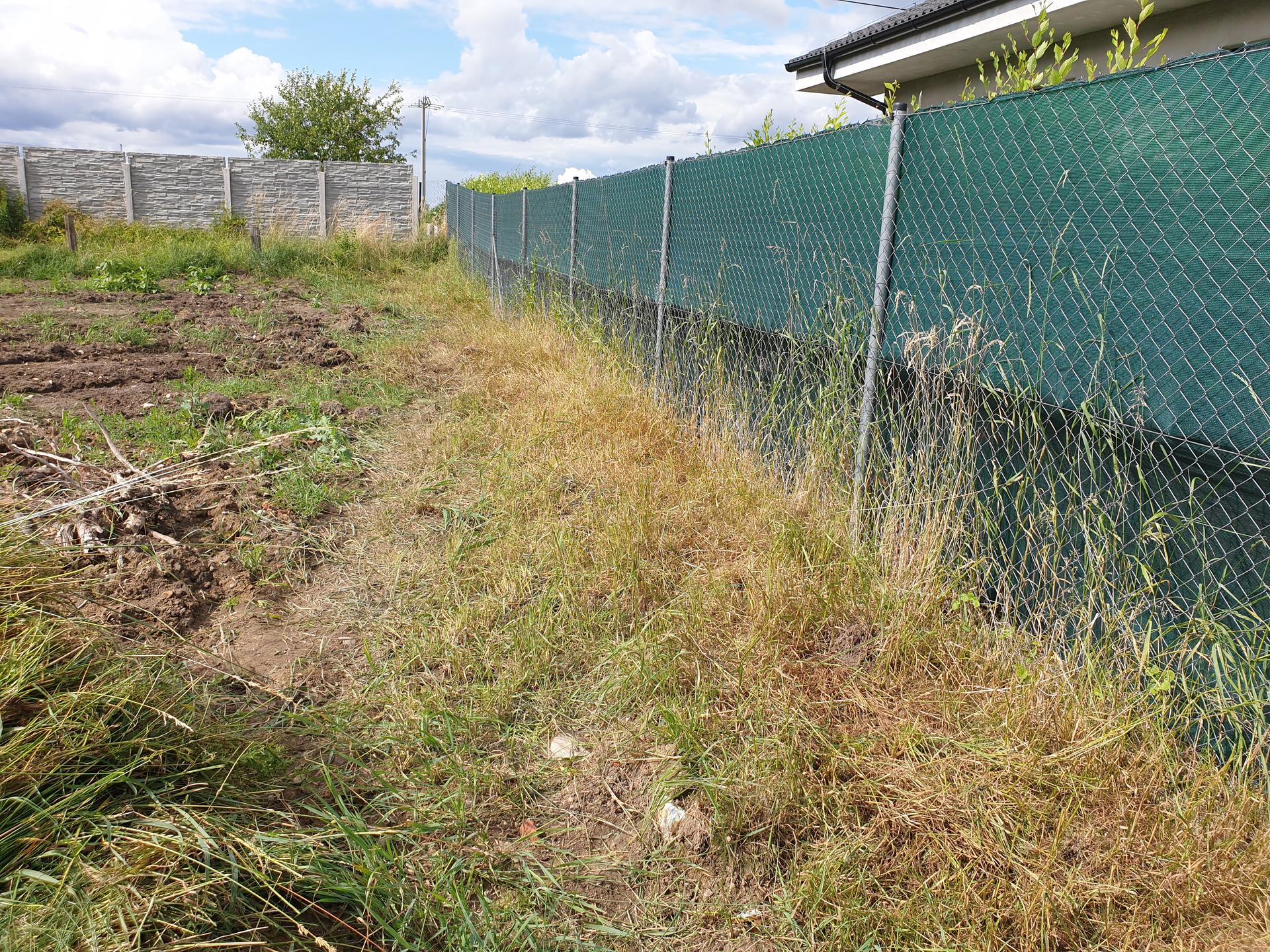 Zahrada a terasa - Obrázek č. 27