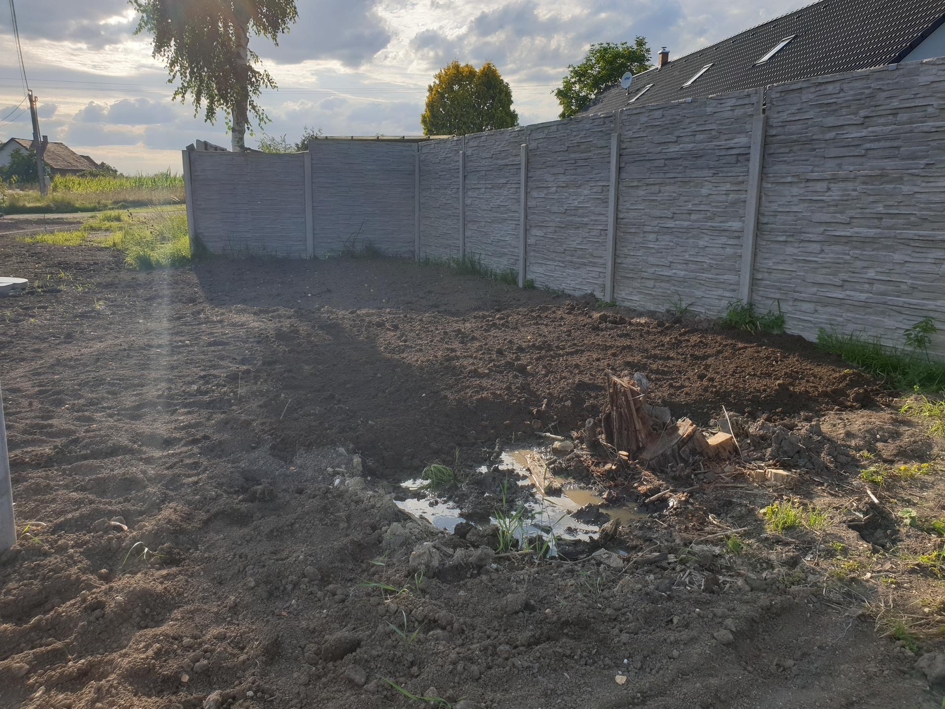 Zahrada a terasa - Obrázek č. 73